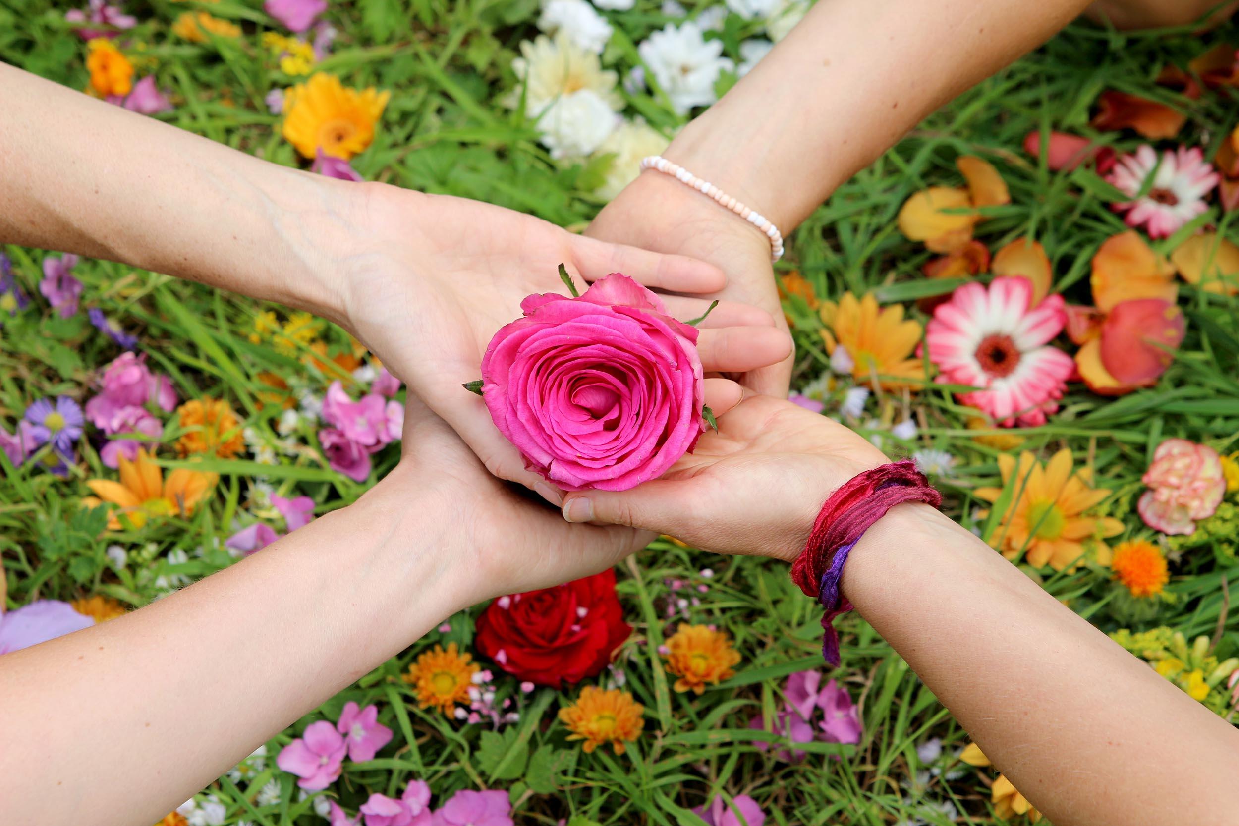 Blüte in Händen